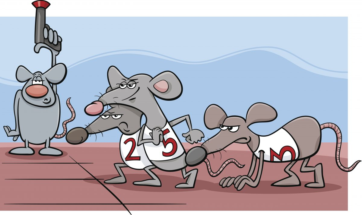 HAVE YOU EVER MET A RAT WHO WON THE RACE?